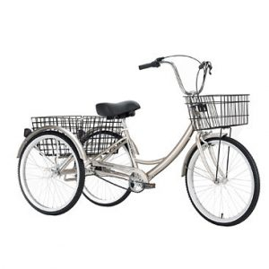 Adult_Trike_Los_Angeles_Rental