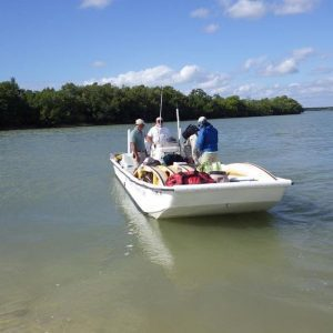 Boat Assisted Kayak Eco Tour | Everglades National Park