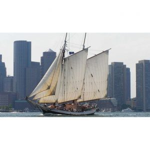 Boston harbor Day Sail