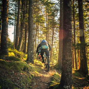 chugach mountain bike tour